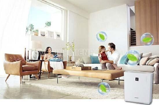 Độ ẩm là gì? Những ảnh hưởng của độ ẩm đến sức khỏe và cuộc sống