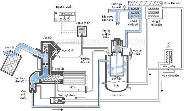 Máy nén khí trục vít và sơ đồ cấu tạo máy nén khí trục vít