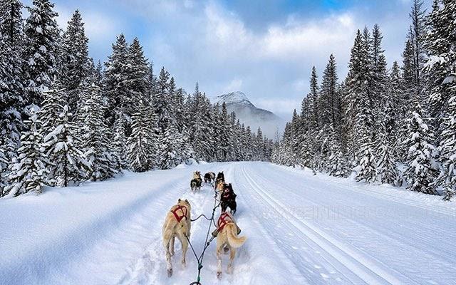 mùa đông canada bắt đầu từ tháng mấy