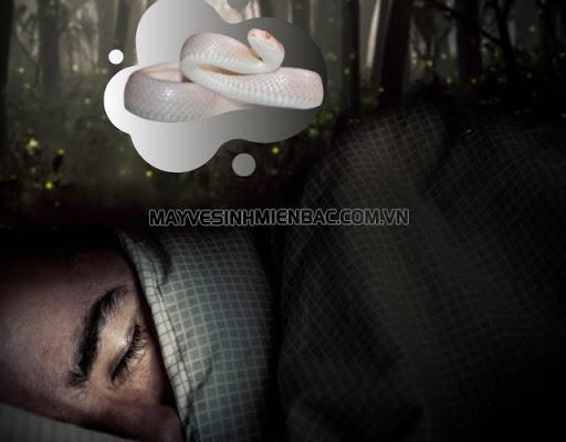 nằm mơ thấy rắn trắng là điềm gì
